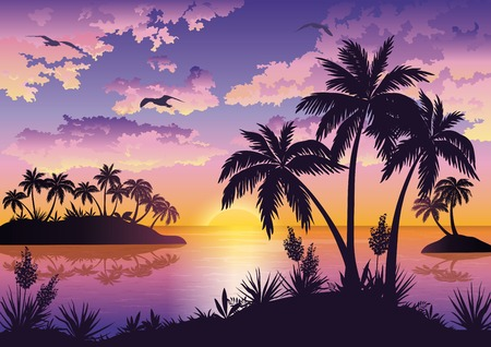 Tropical sea landscape, black silhouettes islands with palm trees and flowers, clouds, sky with clouds, sun and birds gulls. Eps10, contains transparencies. Vector
