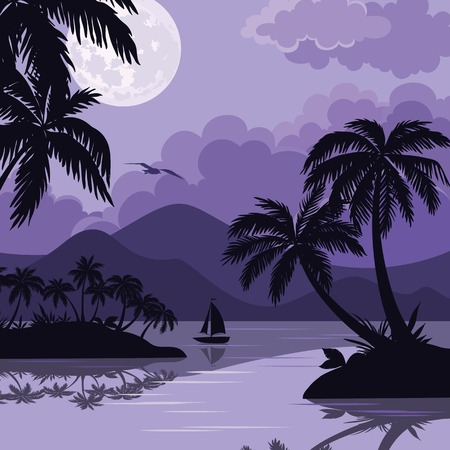 sea bird: Exotic tropical night landscape with moonlit sky, sea islands with palm trees and sailboat silhouettes. Element of this image furnished by NASA (www.visibleearth.nasa.gov). Vector