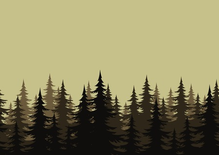 evergreen: Seamless background, landscape, night forest with fir trees silhouettes. Vector Illustration