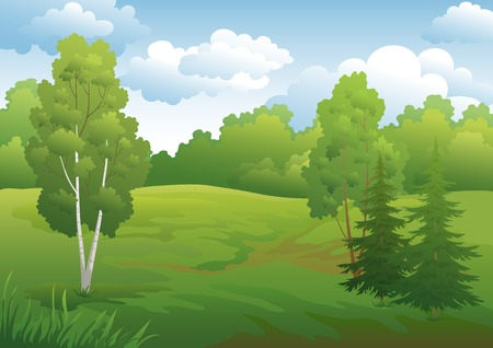 Landscape, green summer forest with fir and birch trees and cloudy sky