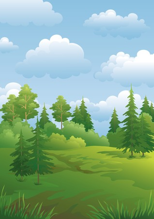 deciduous woodland: Landscape, green summer forest with fir and pine trees and cloudy sky