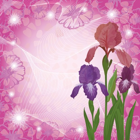 ipomoea: colorful flowers iris and frame of contours ipomoea on abstract background