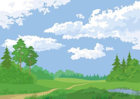 Landschap, de zomer groen bos en de blauwe hemel