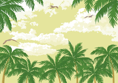 Tropical landscape, green palm trees, seagulls and sky with clouds.  Vector