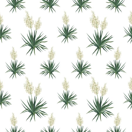 yucca: Seamless floral background, Yucca flowers isolated on white background. Vector