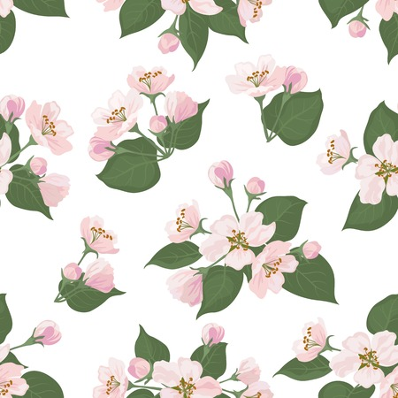 Seamless floral pattern, pink apple tree flowers and green leaves isolated on white background  Vector