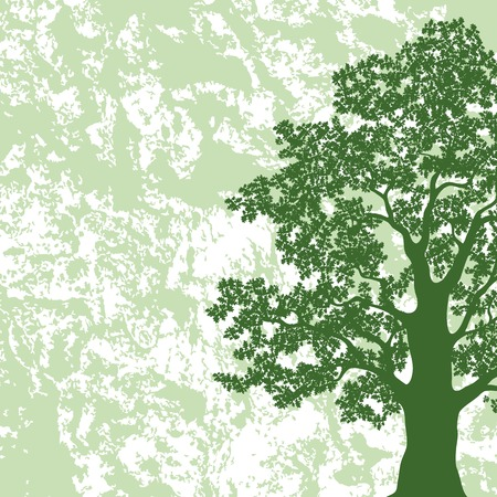 Oak tree with leaves silhouette on abstract green and white background  Vector