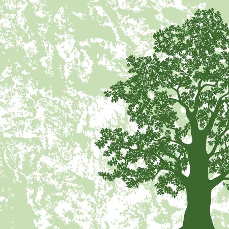 summer trees: �rbol de roble con hojas silueta sobre fondo verde y blanco abstracto del vector