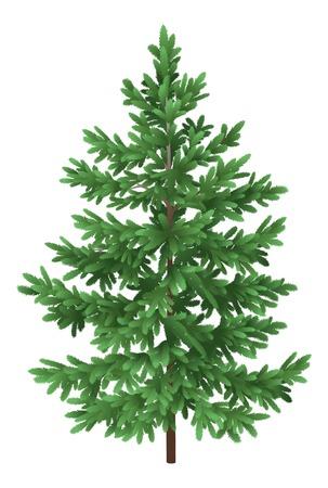 Green Christmas spruce fir tree isolated on white background Vector Vektorové ilustrace