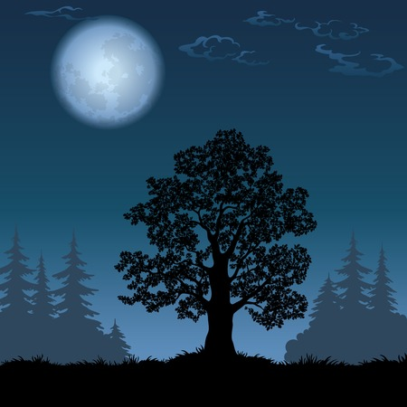 Oak tree, a black silhouette against the night spruce forest and sky with the moon