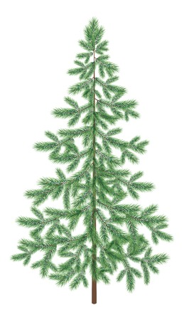 christmastree: Green Christmas spruce fir tree isolated on white background. Vector Illustration