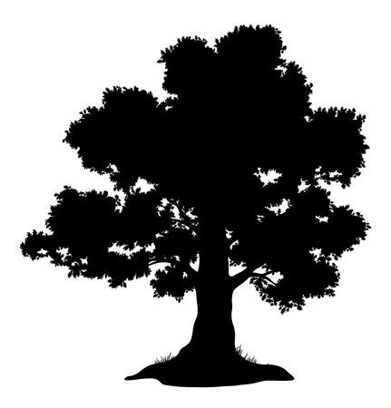 Árbol de roble con hojas y hierba, silueta en negro sobre fondo blanco. Ilustración de vector