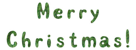 superscription: Lettering holiday festive greeting Merry Christmas, words with a green background with fir tree branches. Vector.