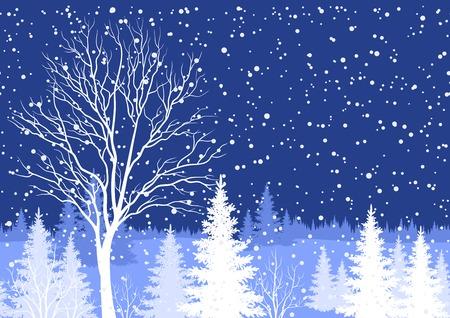 coniferous forest: Seamless horizontal, invierno vacaciones de Navidad paisaje nocturno bosque con los árboles y los copos de nieve siluetas blancas. Vector