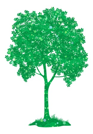 coppice: Chestnut green tree, isolated on white background. , contains transparencies. Vector
