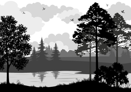 coniferous tree: Landscape, Trees, River and Birds, Black and Grey Silhouette Contour on White Background. Vector Illustration