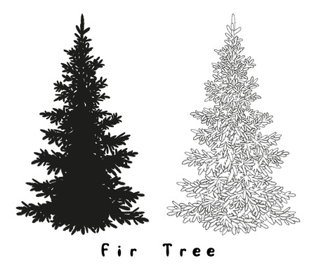 trees silhouette: Christmas Spruce Fir Tree Black Silhouette, Contours and Inscriptions Isolated on White Background. Vector