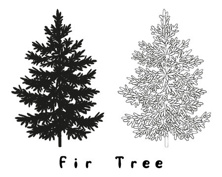 evergreen: Christmas Spruce Fir Tree Black Silhouette, Contours and Inscriptions Isolated on White Background. Vector