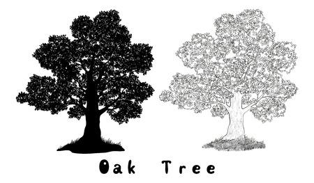 나뭇잎과 잔디 검은 실루엣, 윤곽 및 비문 오크 트리 흰색 배경에 고립. 벡터 일러스트
