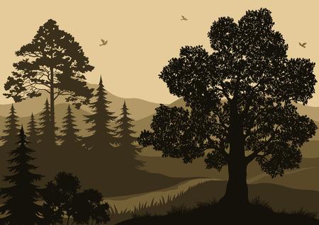 저녁 숲 풍경, 나무, 산 및 조류 실루엣입니다. 벡터