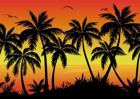 palmeras: Exótico Horizontal Paisaje inconsútil, palmeras, plantas, Océano y Aves Gaviotas Negro siluetas. Eps10, contiene las transparencias. Vector Vectores