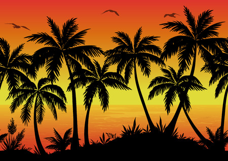 Exotische Horizontaal Naadloze Landschap, palmbomen, planten, Oceaan en vogels Meeuwen Zwarte Silhouetten. Eps10, bevat transparanten. Vector