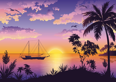 Tropische Landschaft, Sonnenuntergang, Meer, Palmen und Blumen, Schiff und Vögel Möwen in den Himmel mit Wolken. Eps10 enthält Folien. Vektor