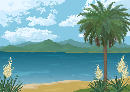 sea grass: Tropical Landscape Palm Tree on Ocean Beach Yucca Flowers Mountains and Clouds Illustration