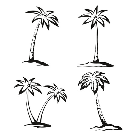 Tropical Palm Trees Pictograms Set, Black Contours Isolated on White Background. Vector Çizim