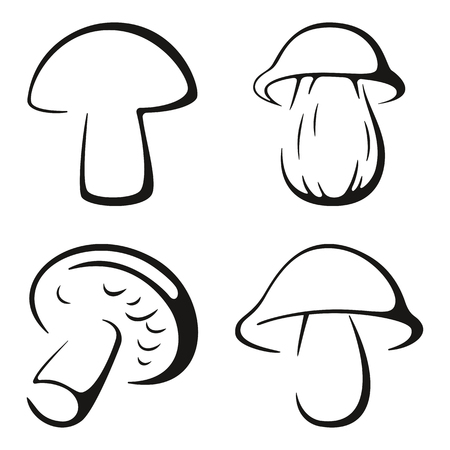 boletus: Mushrooms, Set Monochrome Black Pictograms Icons Isolated on White Background. Vector