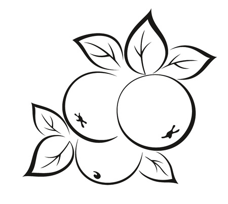 black pictogram: Fruits, Apples with Leaves Monochrome Black Pictogram Isolated on White Background. Vector
