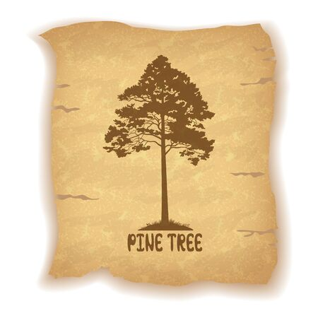 grunge tree: Pine Tree Silhouette and the Inscription on the Vintage Background of an Old Sheet of Paper. Eps10, Contains Transparencies. Vector