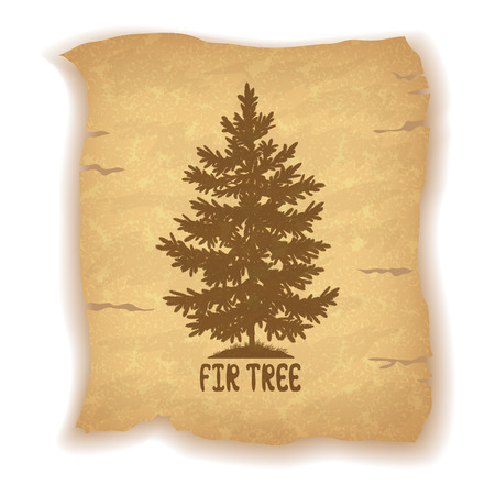 spruce tree: Christmas Fir Tree Silhouette and the Inscription on the Vintage Background of an Old Sheet of Paper. Eps10, Contains Transparencies. Vector Illustration