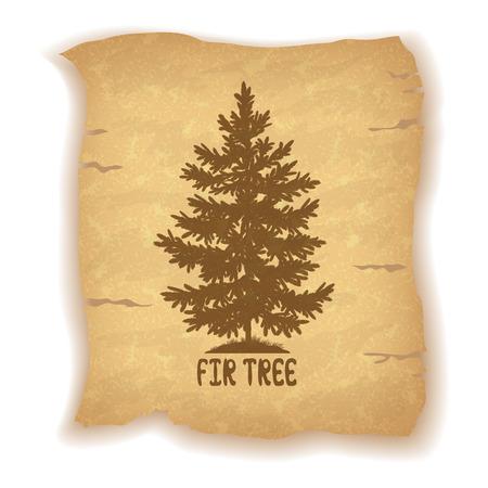 sapin: Sapin de Noël Silhouette et l'inscription sur le fond vintage d'une vieille feuille de papier. Eps10, Contient Transparents. Vecteur