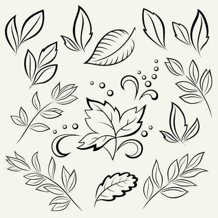 tree branch: Set Leaves, Black Contour Pictograms Isolated on White Background. Vector