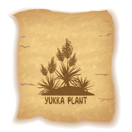 garden landscape: Exotic Flowering Plant Yucca Silhouettes and Inscription on Vintage Background of an Old Sheet of Paper. Contains Transparencies. Vector