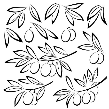 白い背景にオリーブの枝、果実、白黒黒ピクトグラムが分離した葉を設定します。ベクトル
