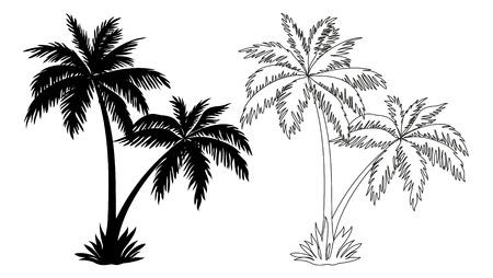 Tropische Palmen, de Zwarte Silhouetten en Outline Contouren geïsoleerd op witte achtergrond. Vector Vector Illustratie