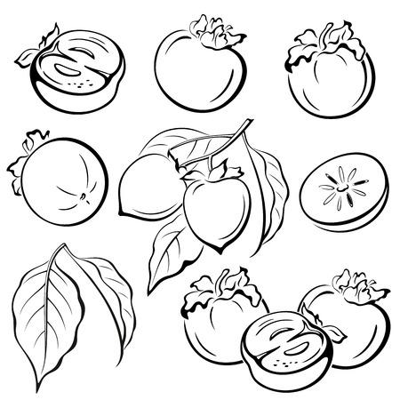 persimmon: Ajuste del caqui Las frutas y las hojas negras Pictogramas iconos aislados sobre fondo blanco. Vector