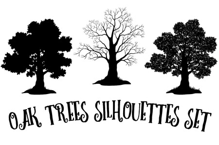 Set of Oak and Grass Silhouettes, Trees Without Leaves and Crowns Versions with Different Study of Details. Vector Illustration