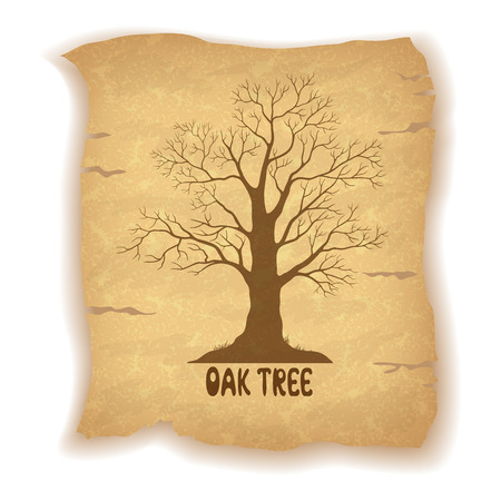 leafless: Oak Leafless Tree Silhouette and the Inscription on the Vintage Background of an Old Sheet of Paper. Eps10, Contains Transparencies. Vector Illustration