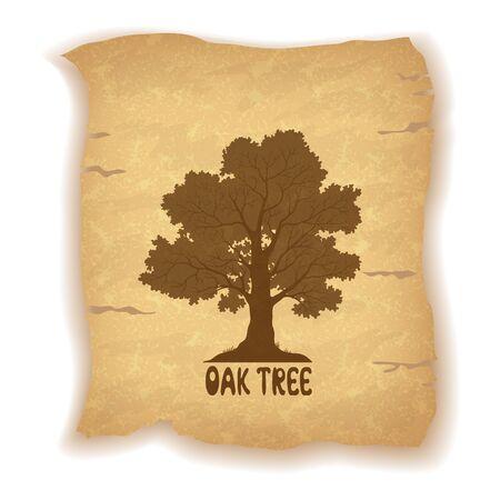 roble arbol: Silueta del árbol de roble y la inscripción en el fondo de la vendimia de una vieja hoja de papel. Eps10, contiene las transparencias. Vector