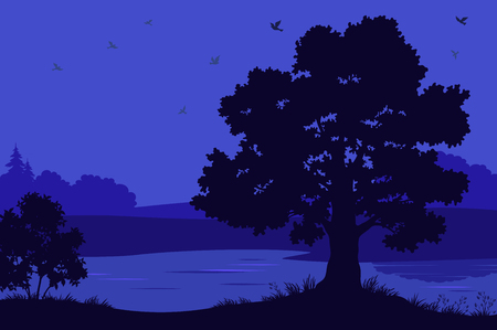 tree grass: Night Landscape, Oak Tree Silhouettes, Bush and Grass on the Bank of Forest River. Vector Illustration