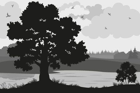 river bank: Evening Forest Landscape, Oak Trees, Bushes and Grass on the River Bank and Birds in the Cloudy Sky, Black and Grey Silhouettes on White Background. Vector Illustration