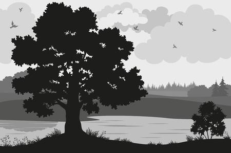 Soirée des paysages forestiers, Chêne Arbres, buissons et herbe sur la rive de la rivière et les oiseaux dans le ciel nuageux, noir et gris Silhouettes sur fond blanc. Vecteur