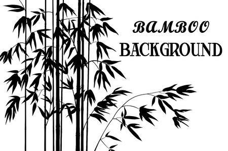 branches with leaves: Exotic Background, Tropical Bamboo Plants Stems with Branches and Leaves Black Silhouettes Isolated on White. Vector