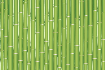 green plants: Exotic Horizontal Seamless Pattern, Tropical Bamboo Plants Green Trunks. Vector