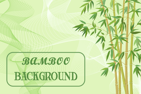 coppice: Bamboo Stems with Green Leaves on Background with Abstract Pattern. Illustration