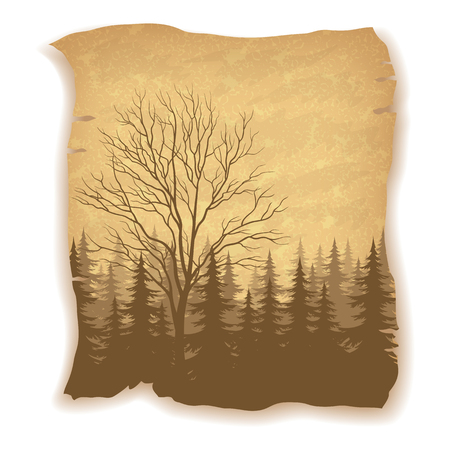 deciduous: Landscape, Deciduous and Coniferous Fir Trees Silhouettes on Vintage Background of an Old Sheet of Paper.