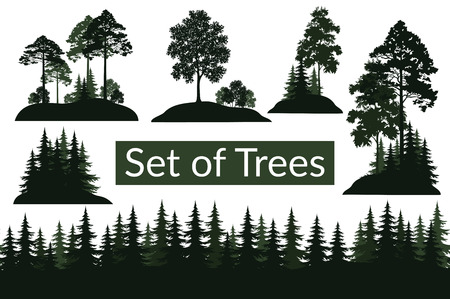 Conjunto aislado sobre fondo blanco Paisajes, coníferas verdes y árboles de hoja caduca y arbustos siluetas, abeto, pino, arce, acacia, lila. Vector